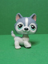 #- chien dog Husky puzzle special edition blue eyes LPS Littlest Pet Shop Figure