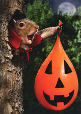 Vampire Squirrel Water Balloon - Stand Out Pop Up Funny Halloween Card