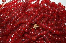 Crow Pony Glass Beads 9 mm strand of a 100 Transparent Dark Red Beads,Bead Craft