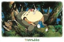 ya07753 Ensky My neighbor Totoro 1000pieces Ghibli jigsaw Puzzles 1000-215