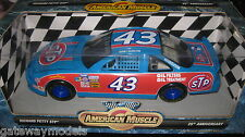 1.18 AMERICAN MUSCLE RICHARD PETTY STP 25th ANNIVERSARY  BOBBY HAMILTON #7804