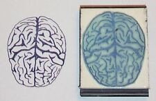 Human Brain rubber stamp by Amazing Arts original!