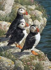 Carl Brenders FISHERMAN'S WHARF-PUFFINS, giclee canvas ARTIST PROOF A/P #1