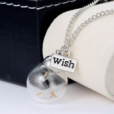 Simple Clear Crystal Ball Dandelion Seed Wishing Bottle Necklace Silver Jewelry