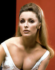ACTRESS SHARON TATE - 8X10 PUBLICITY PHOTO (ZY-243)