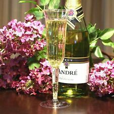 (240 count) - WEDDING PLASTIC WINE CLEAR CHAMPAGNE FLUTES DISPOSABLE GLASSES!