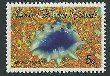 Cocos (Keeling) es. SG139 1985 5c moluscos estampillada sin montar o nunca montada