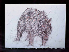 "Wolf Card Blank Inside Quality Printed Winter Storm Wolf Fits 5"" x 7"" Frame NEW"