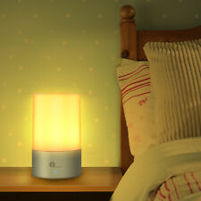 Dimmable Bedside Lamp Touch Sensor Table Lamp Warm White Night Lights RGB