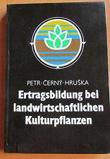 DDR Lehrbuch Ertrag landwirtschaftlicher Kulturpflanzen Getreide Zuckerrüben ..