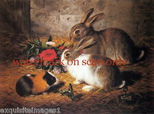 Antique Art~A. Barber~Bunny Rabbits & Guinea Pig Eating Flowers~NEW LgNote Cards