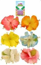 Hawaiian Hula Lei Hibiscus Pastel Flower Hairclip Costume Fancy Dress