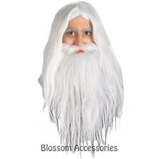 W250 Lord of the Ring - Gandalf Wizard White Mens Wig & Beard Fancy Dress Set