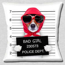 "NEW FUNNY TAN JACK RUSSELL BAD GIRL LINE UP PHOTO PRINT 16"" Pillow Cushion Cover"