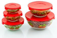 10 Pcs Glass Lunch Bowls Food Storage Containers Set With Lids & Apple Design