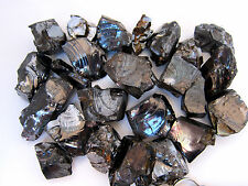 Silver Shungite Rough Stone 14grams QTY1 Protection Protects Environmental RARE