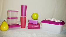 Tupperware 18pc PURPLE Lunch Box ~Pie Wedge ~Sandwich ~9oz Tumbler Snack Cups
