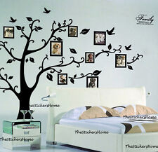 X Large Family Tree Birds Photo Frame Quotes Wall Stickers Home Art Decals Decor