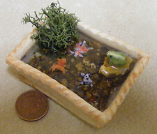 1;12 Oblong Pond With Gold Fish & A Frog Dolls House Miniature Garden Accessory