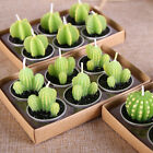 6x Cactus Plant Grape Candles Party Birthday Wedding Decorations Dinner Candle T