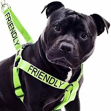 Dog Strap Harness Color Coded Green FRIENDLY Heavy Duty Pit Bull Terrier Mastiff