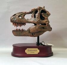 Tyrannosaurus Rex / T.rex Dinosaur Skull Replica 1/10 Scale