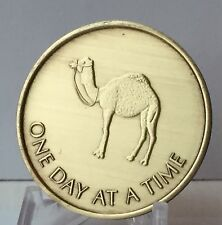 One Day At A Time Camel Serenity Prayer Bronze Recovery Medallion Coin AA NA