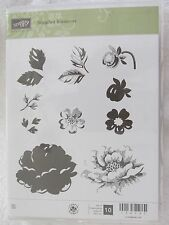 Stampin Up Stippled Blossoms - Rose Petals Flowers Stems Rubber Stamp