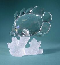 SWAROVSKI CRYSTAL BUTTERFLY FISH ON CORAL 1628888 MINT BOXED smobilizzato RARA