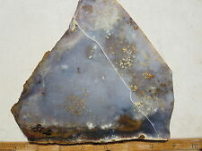 538  POLKA DOT AGATE SLAB. TAKES A GREAT POLISH,  MAKES BEAUTIFUL CABS