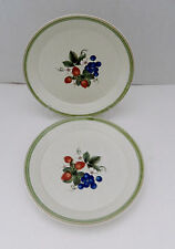 Mikasa Cera Stone CN120 Berry Bloom Two Luncheon Salad Plates Red Blue