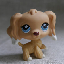 "LPS COLLECTION LITTLEST PET SHOP Blue Eyes Cocker DOG RARE TOY 2"" #748"