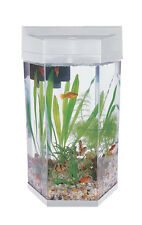 Fish R Fun 7L MODERN HEXAGONAL AQUARIUM TANK KIT (SILVER) filter and light