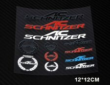 NEW PVC TECH AUTO LOGO DECAL CAR STICKERS BADGE AC SCHNITZER LOGO