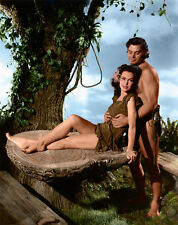 "Tarzan Johnny Weissmuller 14 x 11"" Photo Print"