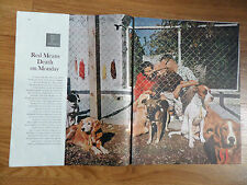 1960 Article Photo Ad City County Dog Pound in Louisville KY Gas Chamber