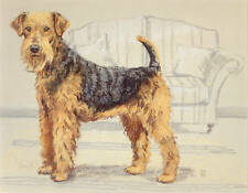 AIREDALE TERRIER DOG FINE ART LIMITED EDITION PRINT