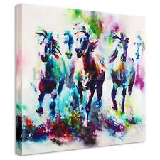 Modern Canvas Prints Paintings Horse Picture Wall Art Display Decor Unframe HOT