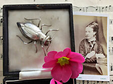 RARE Unusual Antique Victorian Silver Plated Huge Insect Bug Cicada Brooch Boxed
