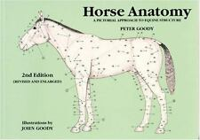 Horse Anatomy : A Pictorial Approach to Equine Structure by Peter Goody...