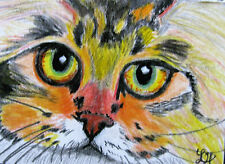 "ORIGINAL ACRYLIC MINIATURE ART ACEO PAINTING BY LJH ""PIPPO""  CAT"