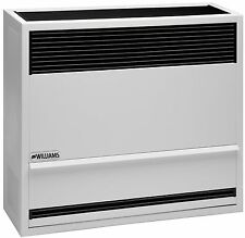 Williams Furnace Company 2203821 22,000 BTU Gravity Direct Vent Wall Furnace LP