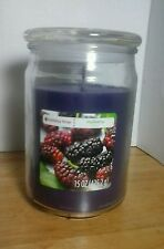Holiday Time mulberry Glass Jar Candle Purple 15 oz w Lid NWT