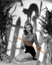 Halloween Pin-up Girl Lillian Wells with Cat Shadow - 1940s- Vintage Photo Print