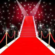 Red carpet moment 8'x8' CP Backdrop Computer-painted Scenic Background ZJZ-020