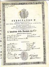 Y346-PASSAPORTO-REGNO DI NAPOLI-CITTADINO DI ATRI-MACCARONAIO