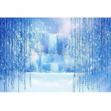 7x5FT Frozen Fairy Tale World Backdrop Studio Vinyl Photography Props Background