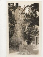 Manaccan Church Tower & Fig Tree Cornwall Vintage RP Postcard 846a