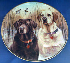 LABRADOR DOG PLATE CALLED PROUD PAIR. CHOCOLATE &  GOLDEN LABRADOR BY JIM KILLEN