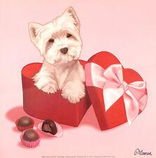 WEST HIGHLAND WHITE TERRIER WESTIE PUPPY FASHION DOG FINE ART PRINT - Chocolates
